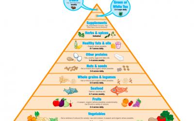 Masterclass – Anti Inflammatory Food Pyramid